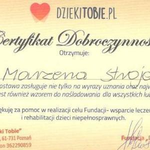 certyfikat 06